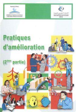 Couverture d'ouvrage: Pratiques d'amélioration (2ème partie)